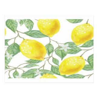 Frukt för citron för gult för grönt för vykort