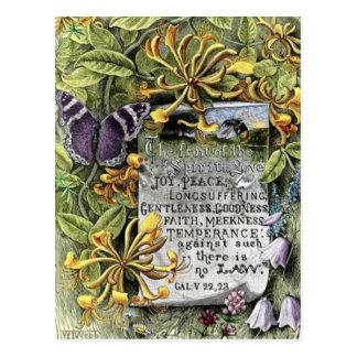 Frukten av anden vykort