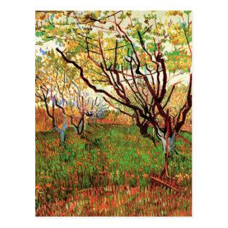 Fruktträdgård i blommar, Vincent Van Gogh Vykort