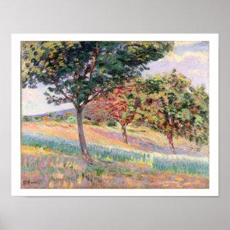 Fruktträdgård på St. Cheron, 1893 (olja på kanfas) Poster