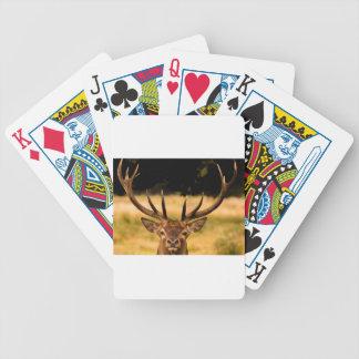 fullvuxen hankronhjort av richmond parkerar spelkort