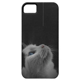 Fundersamt katttelefonfodral iPhone 5 fodral
