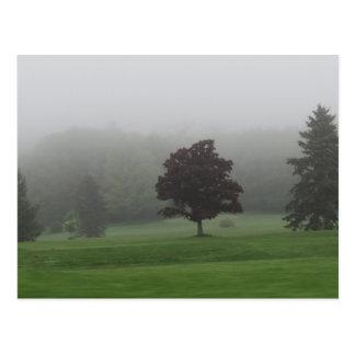 Fylld dimma landskap vykort