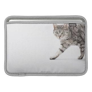 Gå för katt MacBook air sleeve