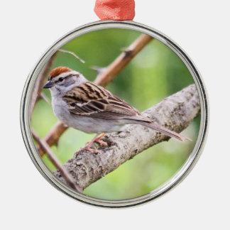 Gå i flisor sparrowen julgransprydnad metall