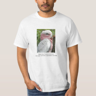 Galah (steg den gick mot kakaduan), tee shirts