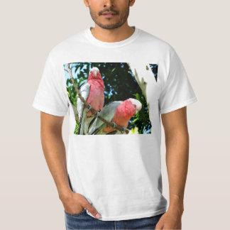 Galahs (steg den gick mot kakaduan), tee shirt
