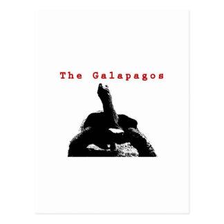 Galapagosen Vykort