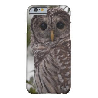 Gallerförsedd uggla för tonåring (Strixvariaen) Barely There iPhone 6 Skal