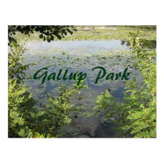 Gallup parkerar i Ann Arbor Vykort