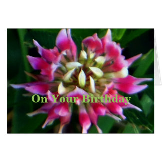 Gammal rosa sprängmedel på din födelsedag hälsningskort