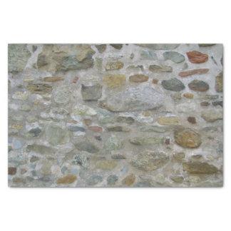 Gammal stenvägg