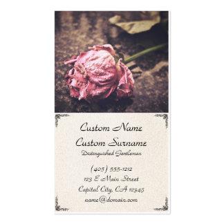 Gammal torkad vintagerosa rosvisitkort set av standard visitkort