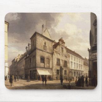 Gammalt Berlin stadshus, 1867 Musmatta