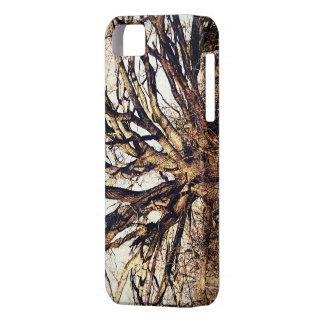 Gammalt Oakträd iPhone 5 Skydd