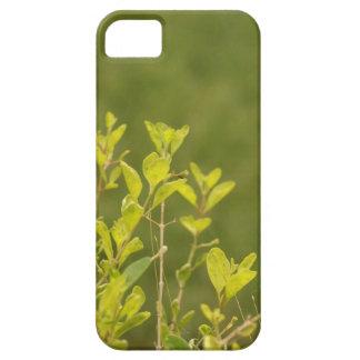 Går grönt iPhone 5 cases