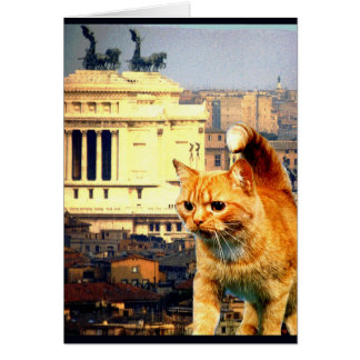"""""""Går kattunge till Rome"""", Hälsningskort"""