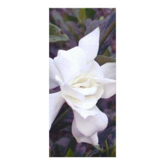 Gardenia tonar rackkort