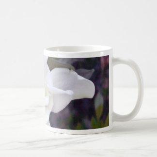 Gardenia tonar vit mugg