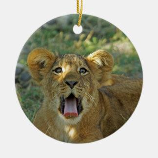 Gäspning för lejon unge julgransprydnad keramik