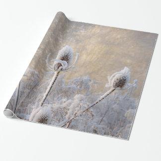 Gåva för natur för foto för rimfrostTeaselsvinter Presentpapper