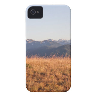 Gåva för orkanRidge olympisk nationalpark iPhone 4 Case-Mate Fodral