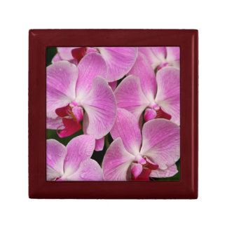 Gift Box - Orchid