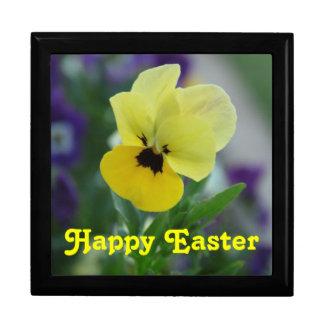 Gåvan för den gula violaen för våren boxas den hög minnessak