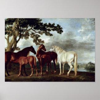 George Stubbs - Mares och föl i en landskap Poster