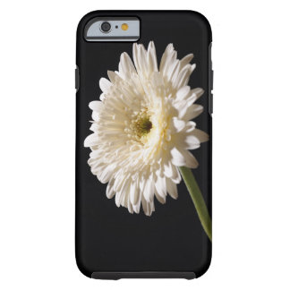 Gerberadaisy på svart bakgrund tough iPhone 6 case
