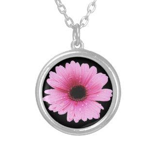 Gerberarosor - daisy silverpläterat halsband