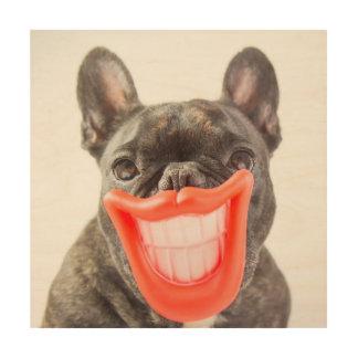 Getty avbildar | A som ler hunden Trätavla