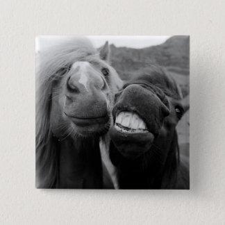 Getty avbildar | le hästar standard kanpp fyrkantig 5.1 cm