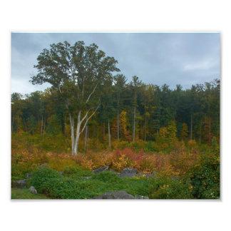 Gettysburg nationalpark - djävulen håla fototryck