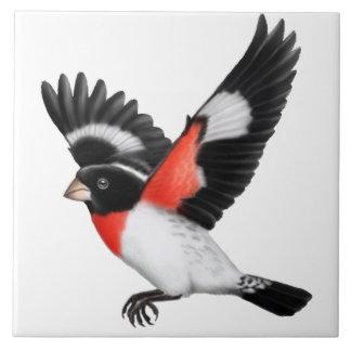 Gick mot Grosbeakfågeln för vilden belägger med Stor Kakelplatta