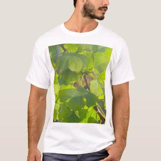 Gingkolöv i höstsol 002 t-shirt