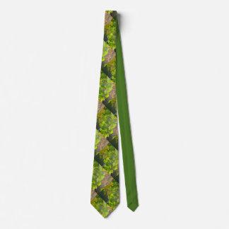 Gingkolöv i höstsol slips