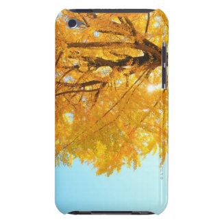 Gingkoträd, Nagano Prefecture, Japan iPod Touch Fodral