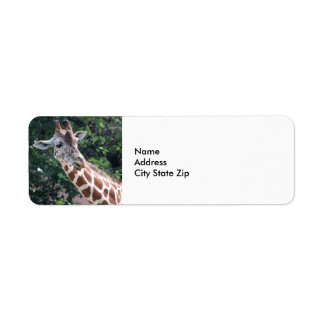 Giraff 7031 returadress etikett