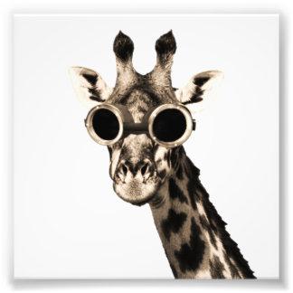 Giraff med Steampunk solglasögonGoggles Fototryck