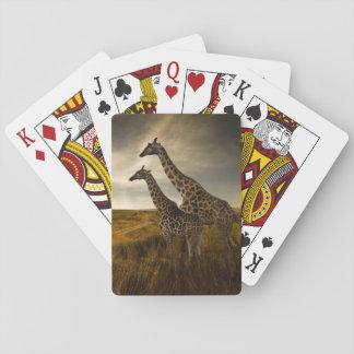 Giraff och landskap casinokort