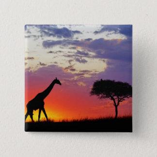 Giraff silhouetted på soluppgången, Giraffa Standard Kanpp Fyrkantig 5.1 Cm