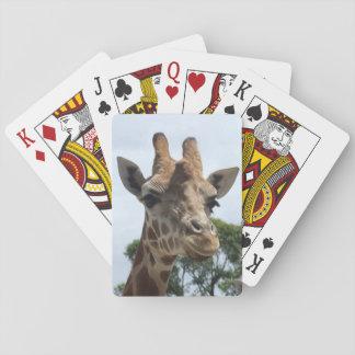Giraff som leker kort casinokort