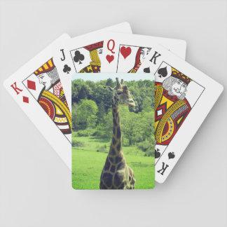 Giraff som leker kort kortlek