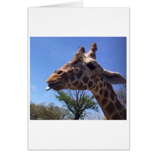 Giraff som ut klibbar hans hälsningkort för tunga hälsningskort