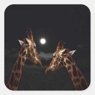 Giraffkärlek i månsken, fyrkantigt klistermärke
