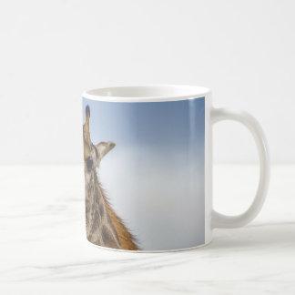 Giraffmugg Vit Mugg