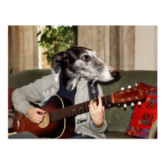 Gitarrhund Vykort