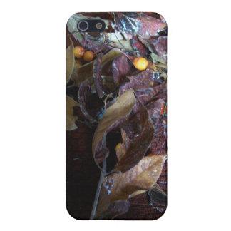 Glad helg iPhone 5 hud