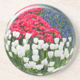 Glass sphere som reflekterar röda vittulpan och underlägg